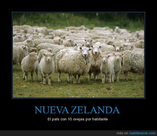 por_nueva_zelanda
