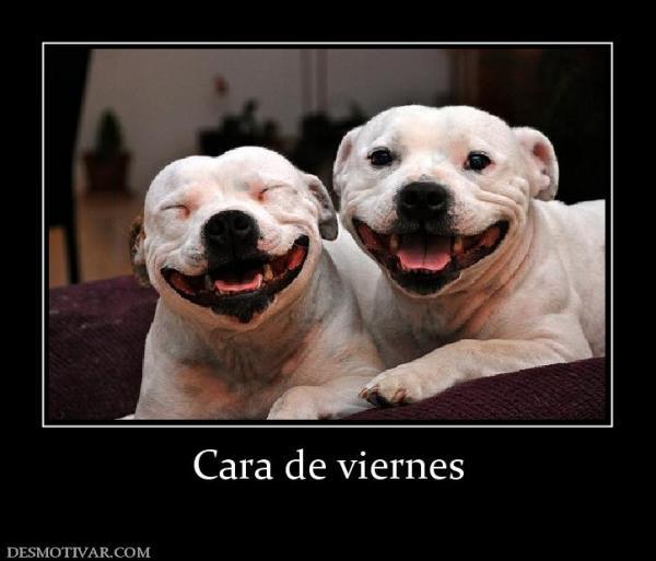 cara_de_viernes