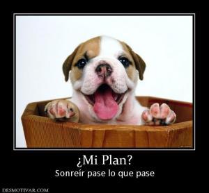 subj_mi_plan