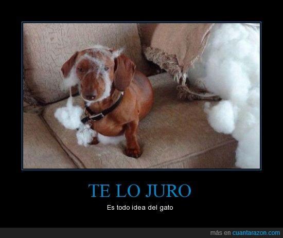 te_lo_juro