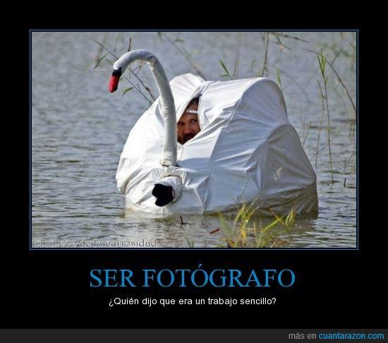 ser_fotografo pret imp